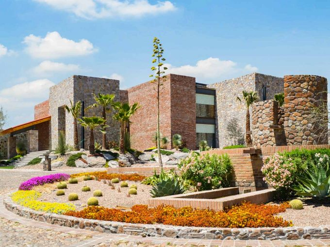 Viñedo San Miguel
